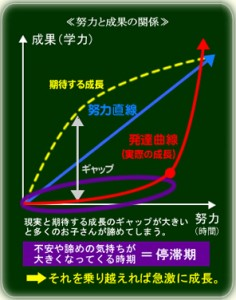 努力直線と発達曲線